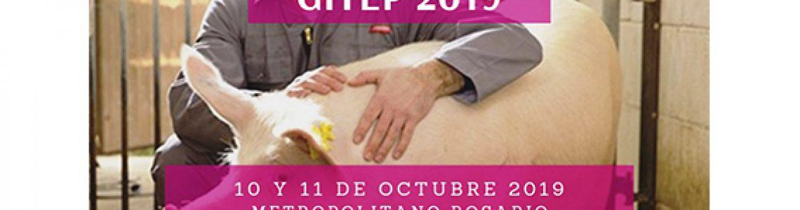 GITEP2019_web